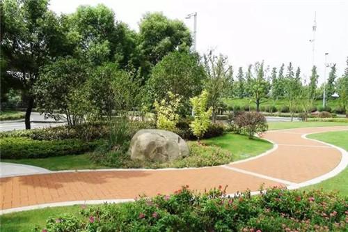园林景观|从绿化工程到苗木生产……