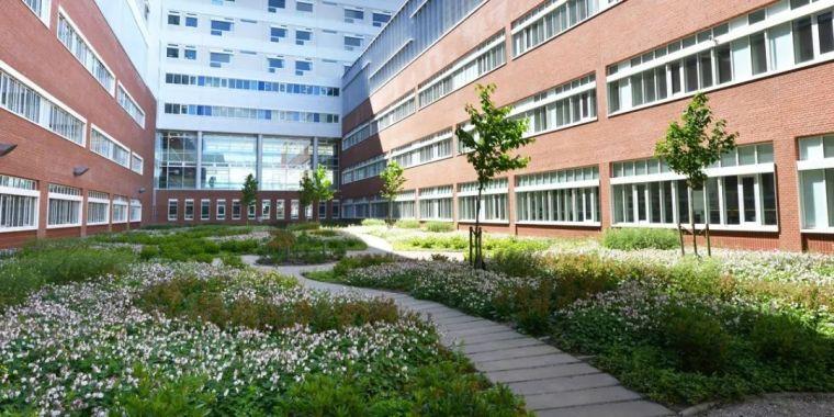 丹麦AARHUS大学医院景观_2