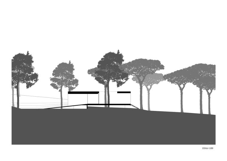 悬浮于松林沙地中的白色住宅剖面图(15)