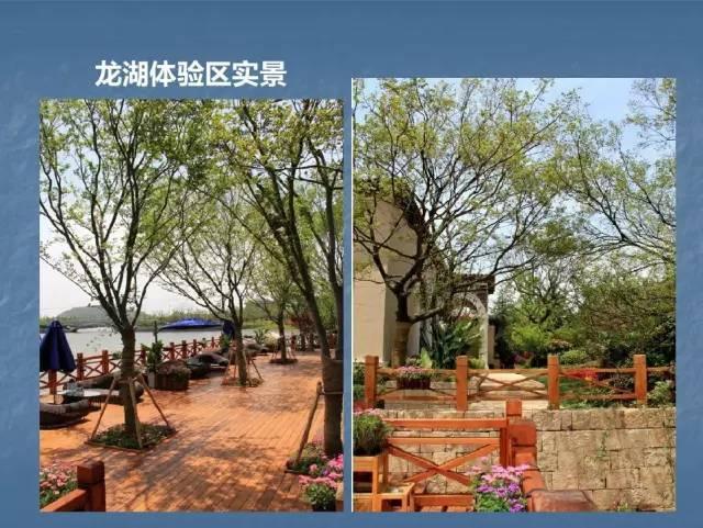 龙湖景观施工工艺标准效果(让你更懂现场)--硬景篇_72