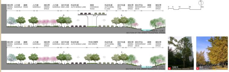 [江苏]南通市经济技术开发区核心区域景观规划(PDF+117页)-剖面图