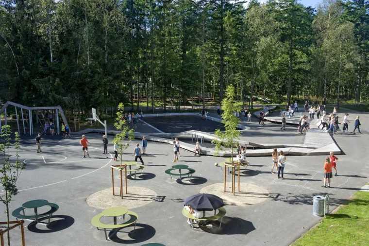 丹麦校园里的神奇树林景观-2