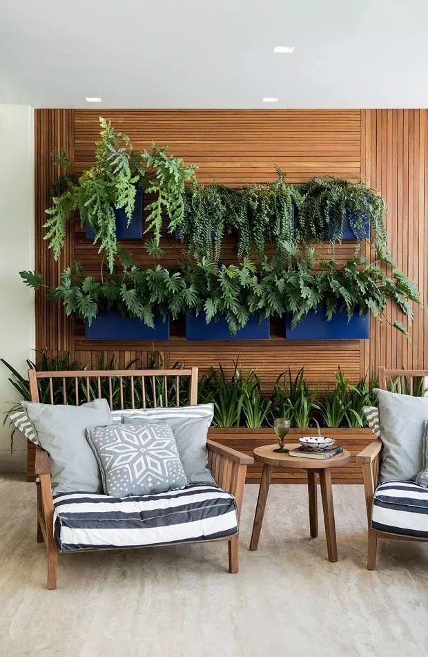 """墙上""""种""""植物,竟如此好看?_14"""