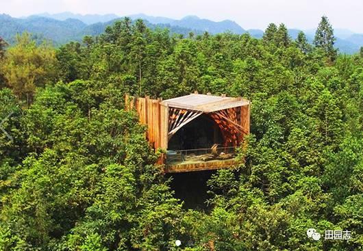 黄山脚下这些神秘可爱的树屋,这就是童话世界吧~
