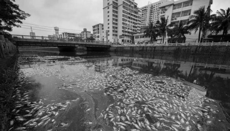 全面推进生态治水,景观设计师能做些什么?_27