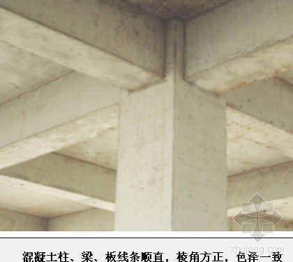 混凝土施工外观质量创优精品图片汇编