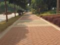 人行道铺装改造工程可行性研究报告