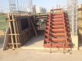 框剪结构综合住宅楼项目策划(68页)