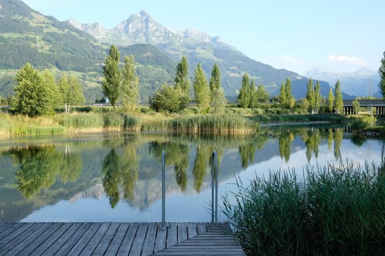 瑞士LowerFactoryPond水系环境修复-16