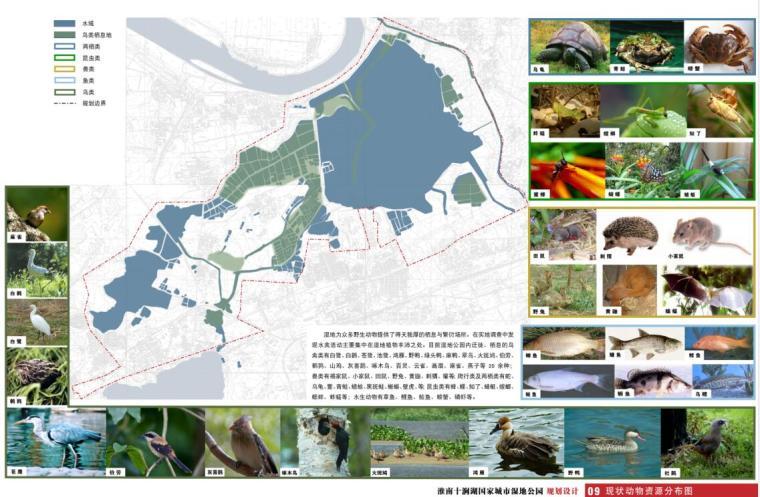 十涧湖国家城市湿地公园规划设计方案.pdf_4