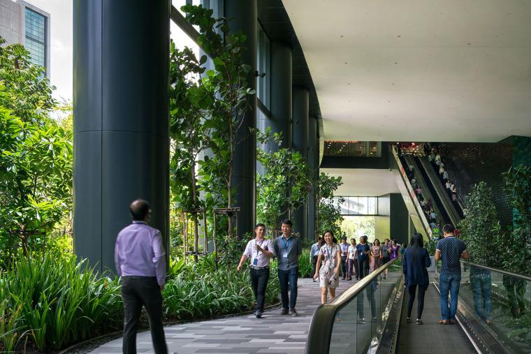 新加坡丰树商业城景观-6