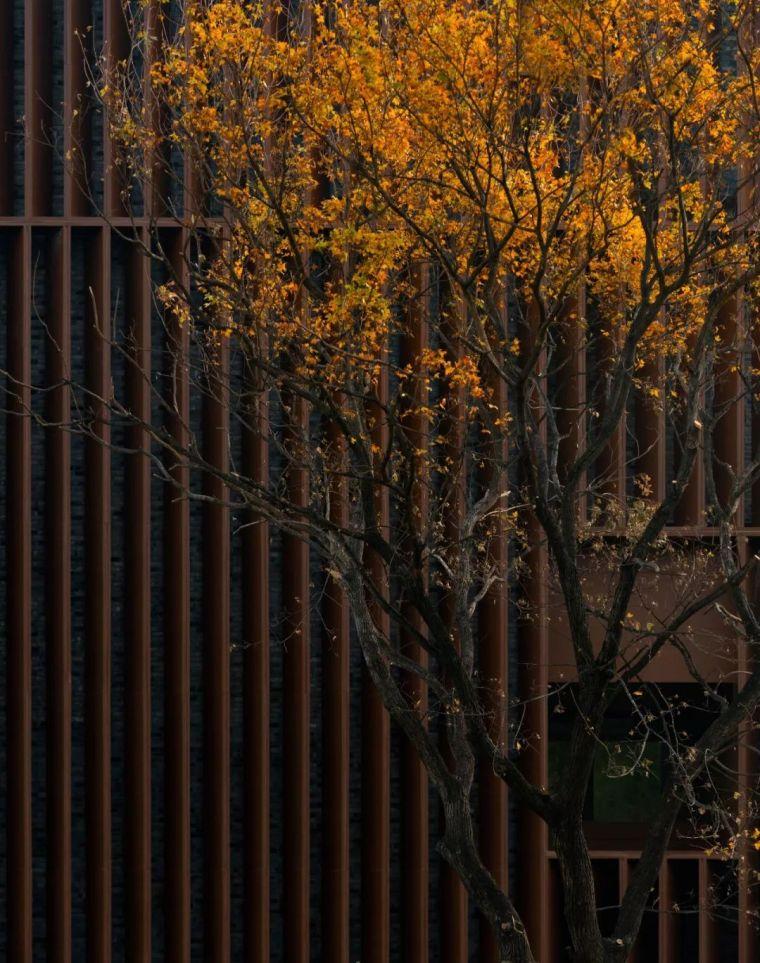 案例 示范区景观规划设计_192