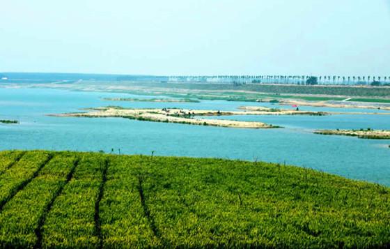 青岛18座水库45年来蓄水最少!七八米深水库现在放羊