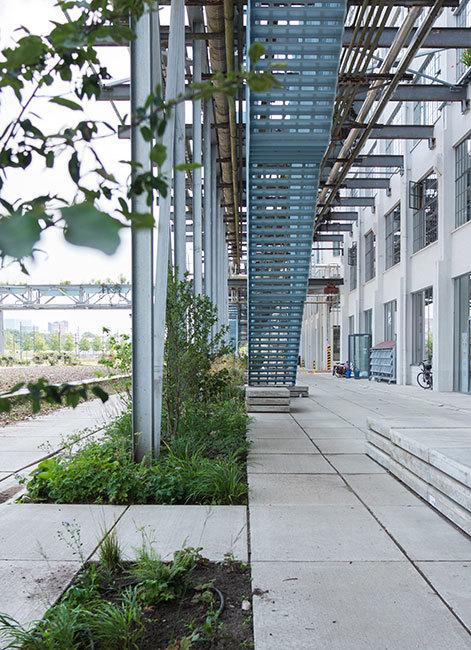 荷兰飞利浦前工业区改造项目StrijpS_3