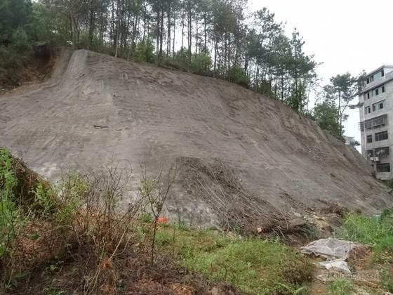 [江西]住宅小区地质灾害危险性评估报告