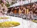 这样的日本园林,我也是醉了!