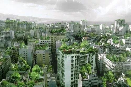 今年,在南京,这座建筑将变成森林_8