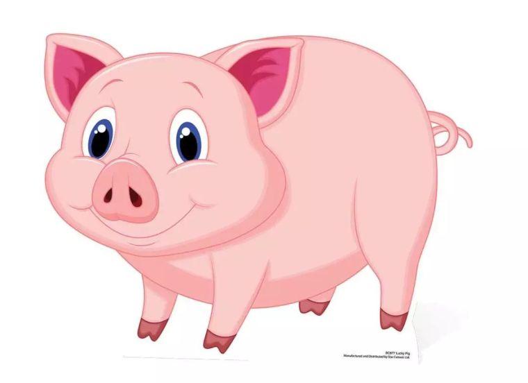 2019年,有设计感地做一只粉红色的猪_2