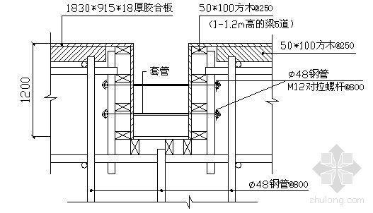 浙江某体育馆模板高支撑施工方案