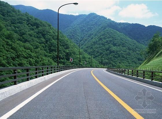 [四川]村镇道路工程量清单及招标文件(含图纸 2个标段)