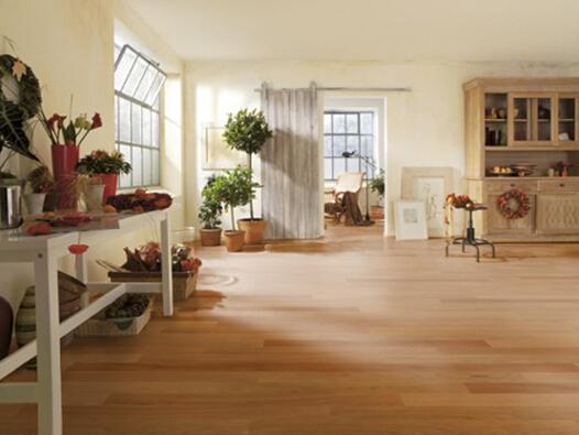 白蜡木和橡木地板有什么不一样呢