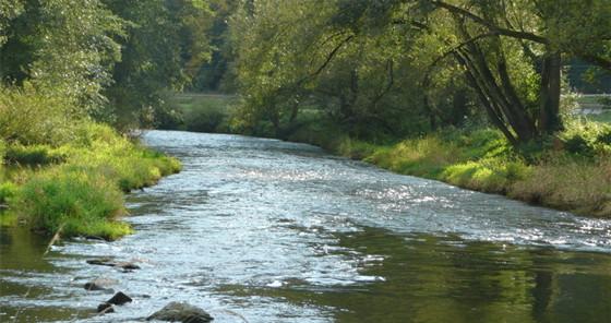 infraworks地形资料下载-河流生态结构及生态功能剖析,重在理解
