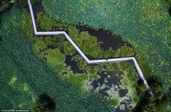 """园林路径设计的那些""""套路""""!_49"""
