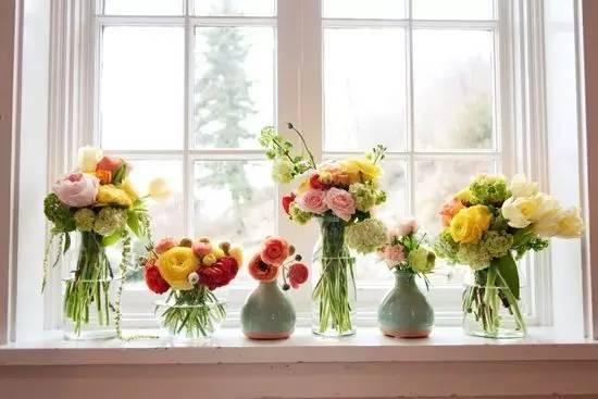何必远方,连自家的窗台都可以美成诗和田野!