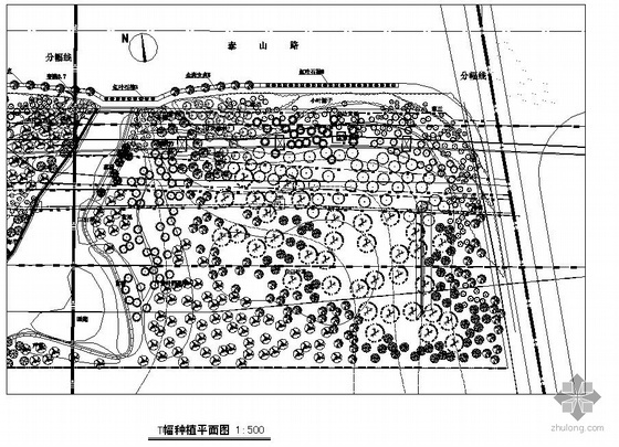 路段沿线绿化工程种植设计图