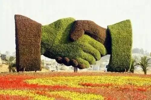 80个极美植物雕塑_32