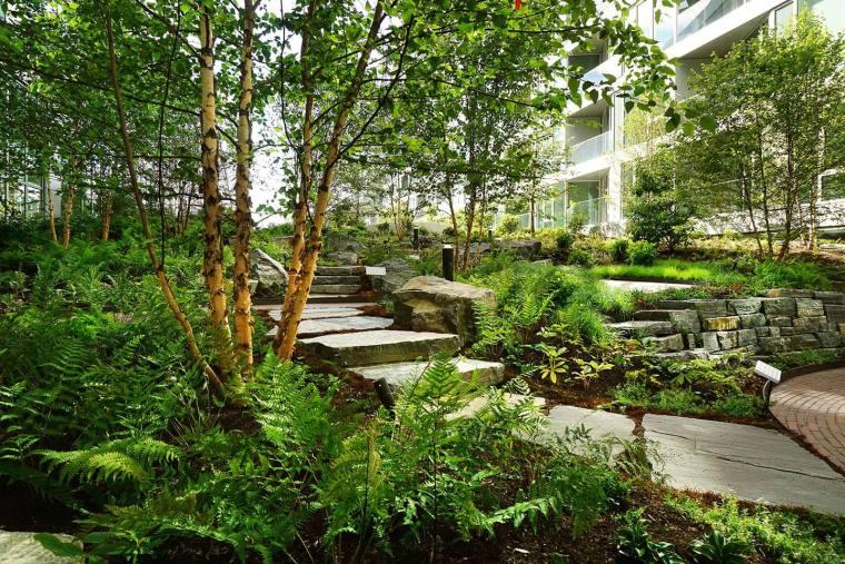 庭院景观-这些庭院景观知识要掌握(文末附庭院景观资料)