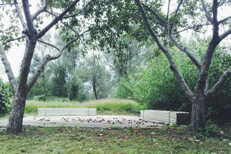 斯洛文尼亚首都的市镇公园-8