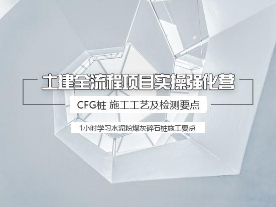 【9.9元体验课】CFG桩基检测案例解读