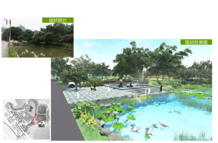 水塘周边改造