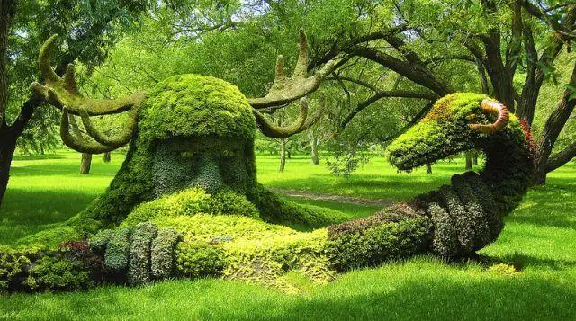 80个极美植物雕塑_1
