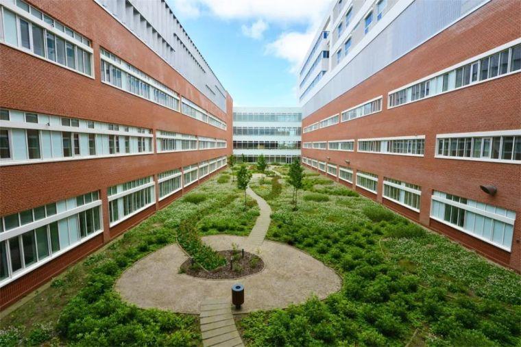丹麦AARHUS大学医院景观_5