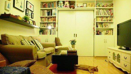 一室一厅家装设计 清爽又精致的家