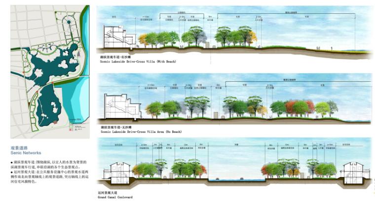 [山东]滞洪区景观概念性规划文本(知名设计公司)-道路剖面图