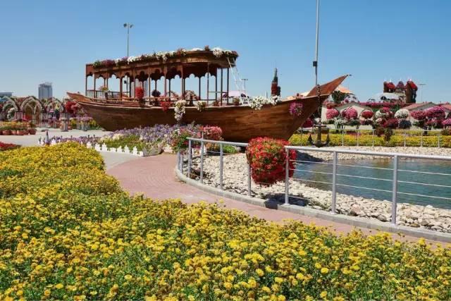 迪拜的花卉展览,全世界规模最大!你肯定没看过!_32