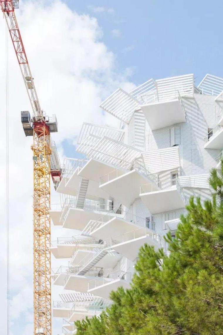 """藤本壮介设计的像树一样的公寓楼建成了,每户都有""""空中花园""""_27"""