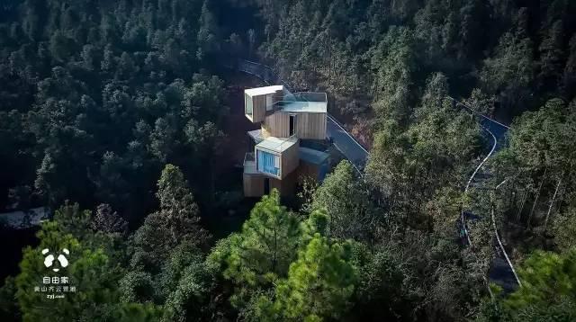 这些树屋,满足你对森林的所有幻想_16