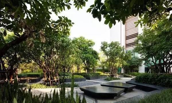 泰国在遭受打击时,景观设计做了什么?