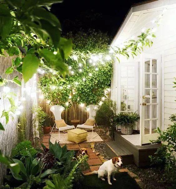 来别人的花园里散步!