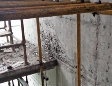[QC成果]提高剪力墙临空面接槎混凝土外观质量