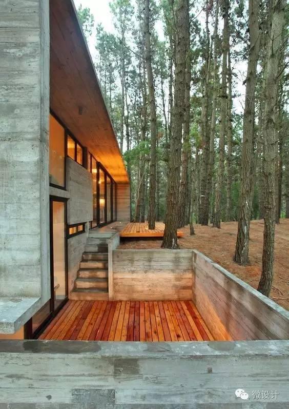 回到乡村,盖一栋森林中的房子_37