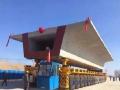 预制梁混凝土外观缺陷修补专项方案