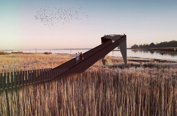 鹿特丹建筑师设计观鸟步道_5