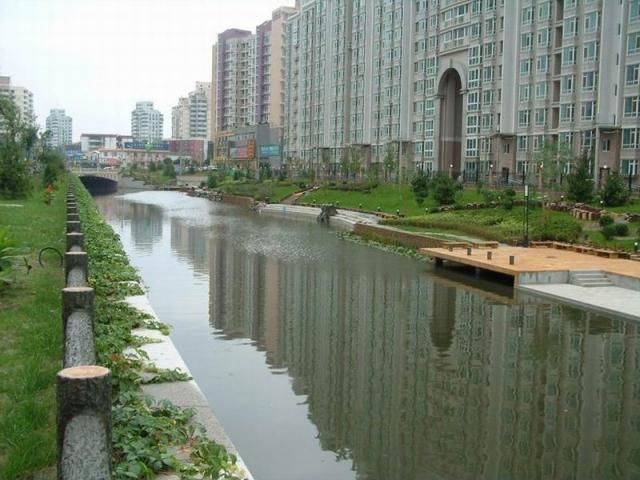 河道堤防工程的侵蚀因素及生物防护