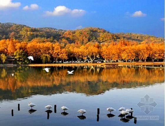 [杭州]西溪湿地渔庄景观提升零星工程招标文件