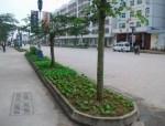 小区绿化带变业主菜园怎么办?